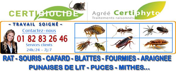 Deratisation Bruyeres sur Oise 95820